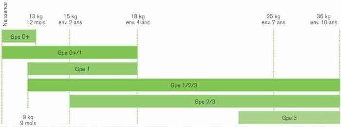 Comprendre les classes de sièges autos avec un graphique